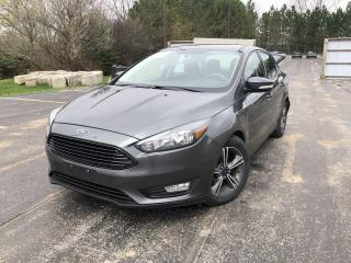 Used 2016 Ford Focus SE for sale in Cayuga, ON