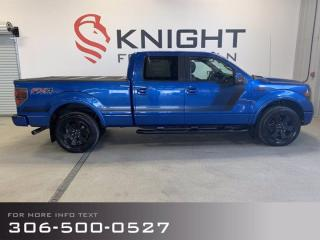 Used 2014 Ford F-150 FX4, Special Edition, Nice Condition! for sale in Moose Jaw, SK
