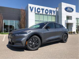 New 2021 Ford Mustang Mach-E California Route 1 for sale in Chatham, ON