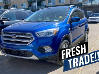 Used 2017 Ford Escape SE for sale in Red Deer, AB