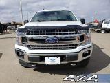 2019 Ford F-150 XLT  - Navigation - $350 B/W