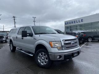 Used 2014 Ford F-150 CREW 5,0L 302A for sale in St-Eustache, QC