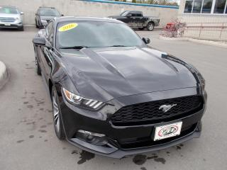 Used 2016 Ford Mustang Base for sale in Windsor, ON