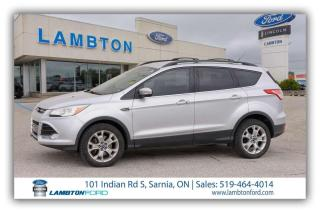 Used 2013 Ford Escape SEL for sale in Sarnia, ON