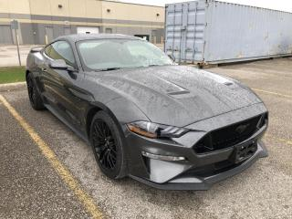 Used 2019 Ford Mustang GT Fastback 5.0L V8 AUTO NAV REAR CAMERA P.SEAT for sale in Orillia, ON