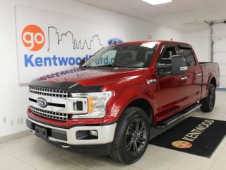 Used 2019 Ford F-150 XLT | 302a | 6.5