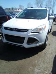 Used 2013 Ford Escape SE FWD for sale in Leamington, ON