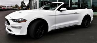 Used 2019 Ford Mustang ECOBOOST PREMIUM CONVERTIBLE 2.3L TURBO for sale in Burlington, ON