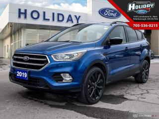 Used 2019 Ford Escape SE for sale in Peterborough, ON