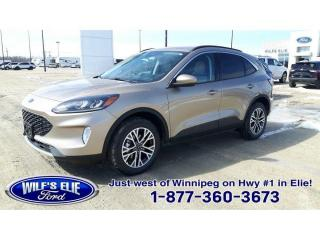 New 2021 Ford Escape SEL for sale in Elie, MB