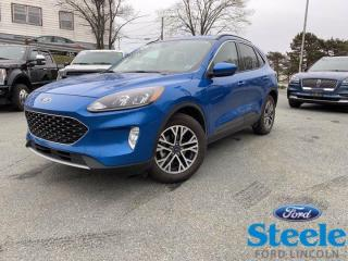 New 2020 Ford Escape SEL for sale in Halifax, NS