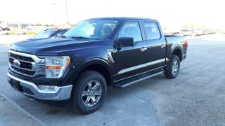 New 2021 Ford F-150 XLT ** DEMO ** for sale in Elie, MB
