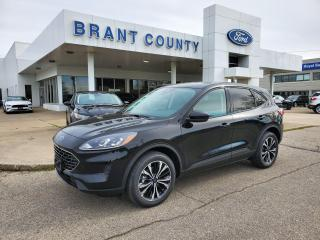 Used 2021 Ford Escape SE for sale in Brantford, ON