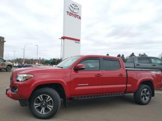 Used 2018 Toyota Tacoma TRD Sport for sale in Moncton, NB