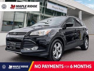 Used 2014 Ford Escape SE for sale in Maple Ridge, BC