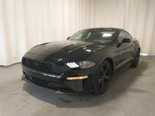 New 2021 Ford Mustang EcoBoost for sale in Regina, SK
