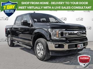 Used 2019 Ford F-150 XLT   ONE OWNER   CLEAN CARFAX   FORDPASS   REAR CAMERA   for sale in Barrie, ON