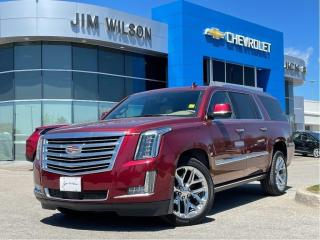 Used 2020 Cadillac Escalade ESV Platinum PLATINUM LOADED POWER BOARDS ROOF NAV 22'' WHEELS for sale in Orillia, ON
