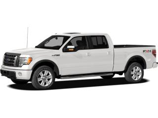 Used 2011 Ford F-150 XLT for sale in Brandon, MB