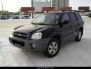 Used 2005 Hyundai Santa Fe GL for sale in Unity, SK
