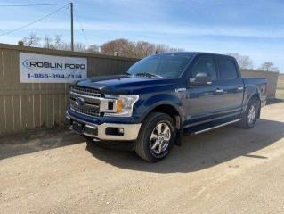 Used 2019 Ford F-150 XLT for sale in Roblin, MB