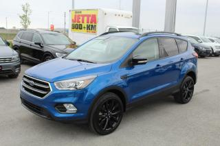 Used 2019 Ford Escape 2.0l Titanium for sale in Whitby, ON