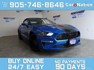 Used 2019 Ford Mustang PREMIUM | CONVERTIBLE | BLACK PKG | NAV | LEATHER for sale in Brantford, ON