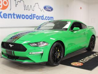 Used 2019 Ford Mustang Ecoboost PREMIUM | Nav | Performance Exhaust | Ricing Stripes | Performance Pkg for sale in Edmonton, AB