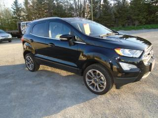 Used 2020 Ford EcoSport Titanium AWD for sale in Beaverton, ON