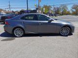 2014 Lexus IS 250 SPORT Photo44
