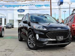 Used 2020 Ford Escape SEL FWD for sale in Hagersville, ON