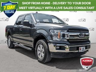 Used 2019 Ford F-150 XLT   17