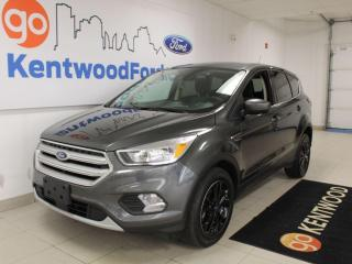 Used 2019 Ford Escape SE for sale in Edmonton, AB