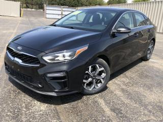 Used 2019 Kia Forte EX 2WD for sale in Cayuga, ON