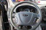 2010 Kia Sedona LX at