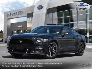 Used 2017 Ford Mustang V6 for sale in Ottawa, ON