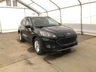 New 2021 Ford Escape SE for sale in Meadow Lake, SK