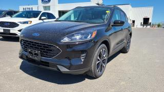 New 2021 Ford Escape SE Hybrid AWD for sale in Kingston, ON