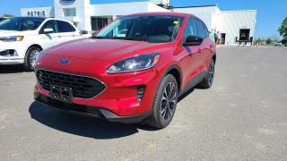 New 2021 Ford Escape SE AWD for sale in Kingston, ON