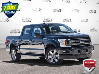 Used 2019 Ford F-150 XLT FX4 Pkg | 5.0L | Navigation | 20 Inch Rims + Ext Warranty Inc !! for sale in Oakville, ON