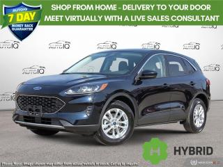 New 2021 Ford Escape SE Hybrid for sale in Kitchener, ON
