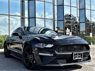 Used 2019 Ford Mustang EcoBoost Fastback for sale in Brampton, ON