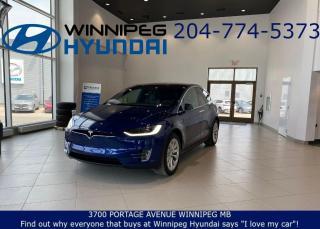 Used 2017 Tesla Model X 75D for sale in Winnipeg, MB
