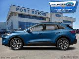 2021 Ford Escape Titanium Hybrid AWD  - Sunroof - $282 B/W