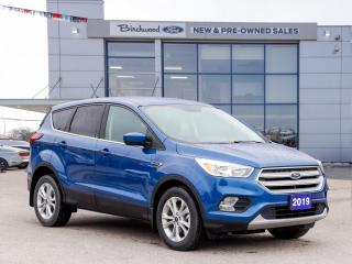 Used 2019 Ford Escape SE NAV | LOW KM | CLEAN CARFAX for sale in Winnipeg, MB