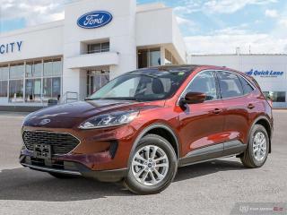 New 2021 Ford Escape SE Hybrid for sale in Winnipeg, MB