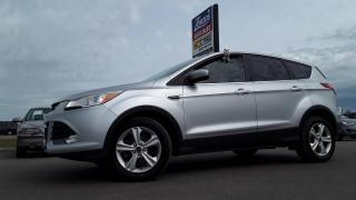 Used 2015 Ford Escape SE for sale in Brandon, MB
