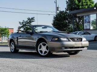 Used 2002 Ford Mustang Convertible GT | LOW KM | GREAT CONDITION |PRICE TO SELL for sale in North York, ON