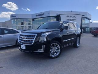 Used 2017 Cadillac Escalade Premium Luxury   Heated Steering Wheel   Navigation   for sale in Winnipeg, MB