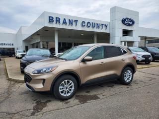 New 2021 Ford Escape SE for sale in Brantford, ON